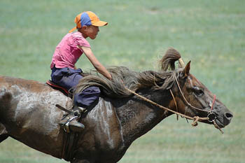 A rider competing for a traditional horse race during Naadam festival in Mongolia